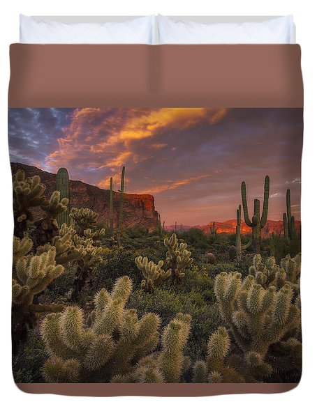 Prickly Pink Peralta Duvet Cover by Peter Coskun