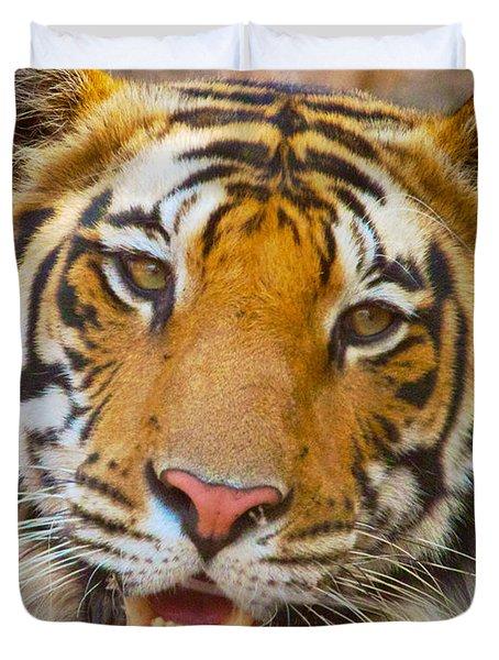 Prime Tiger Duvet Cover
