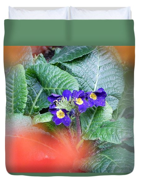 Duvet Cover featuring the photograph Primrose by Betty-Anne McDonald