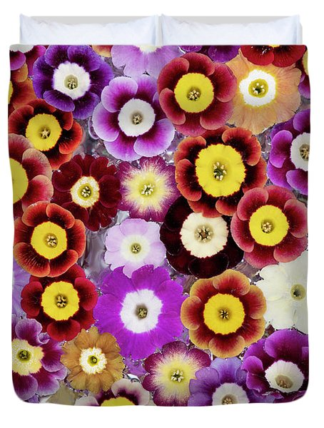 Primula Auricula Pattern Duvet Cover