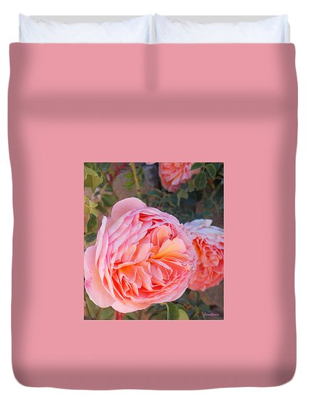 Princess Margret Fragrant Climbing Roses Duvet Cover by Anastasia Savage Ealy