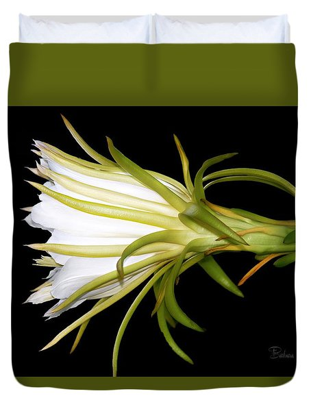 Profile Night Blooming Cereus Duvet Cover by Barbara Chichester