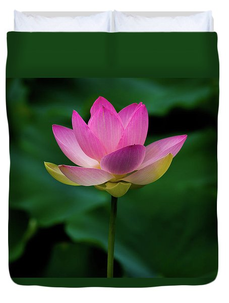 Profile Of A Lotus Lily Duvet Cover