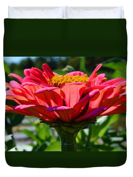 Duvet Cover featuring the photograph Profile Of Zowie Zinnia by Kathy Kelly