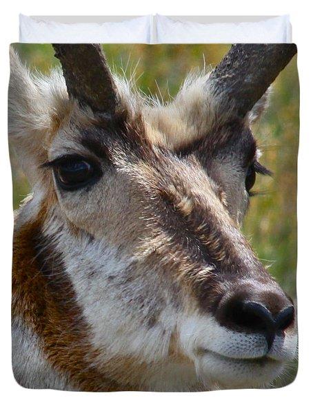 Pronghorn Buck Face Study Duvet Cover by Karon Melillo DeVega