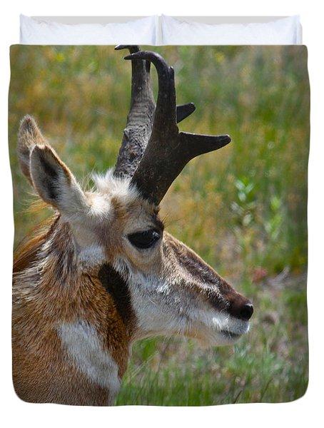 Pronghorn Buck Profile Duvet Cover by Karon Melillo DeVega