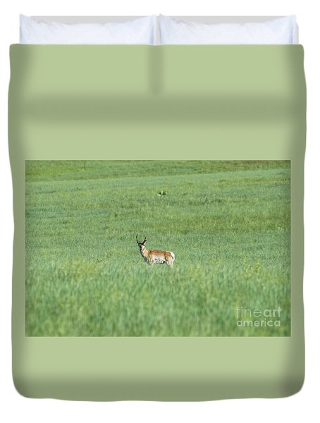 Pronghorn In A Sea Of Green Duvet Cover