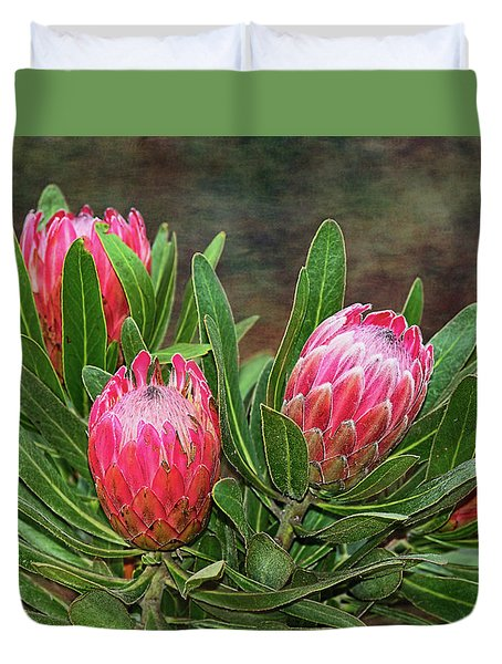Duvet Cover featuring the photograph Proteas In Bloom By Kaye Menner by Kaye Menner