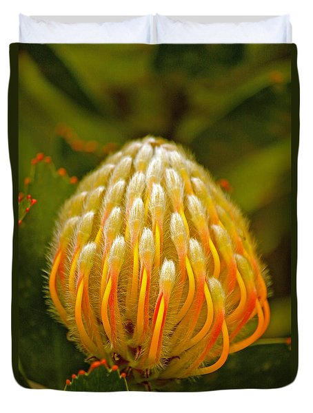 Proteas Ready To Blossom  Duvet Cover