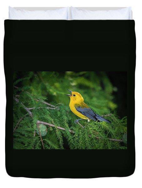 Prothonatory Warbler 9809 Duvet Cover