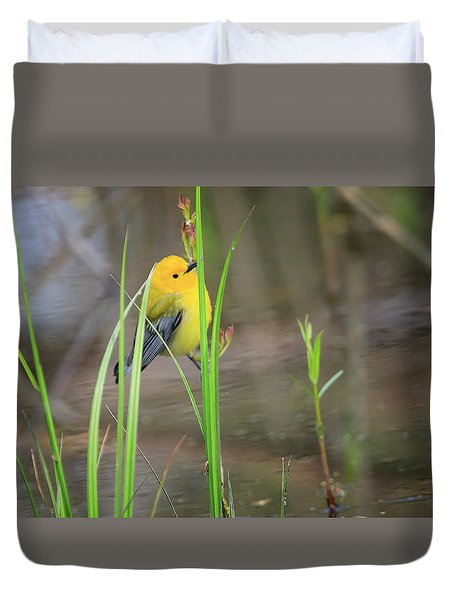 Prothonotary Warbler 5 Duvet Cover by Gary Hall