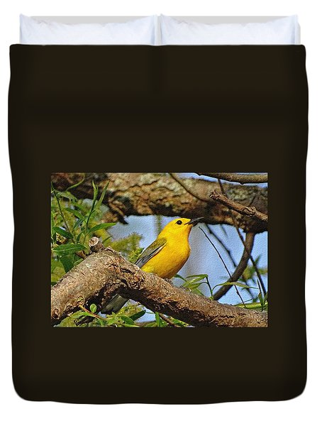 Prothonotary Warbler II Duvet Cover