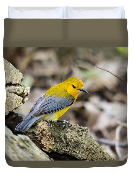 Prothonotary Warbler Duvet Cover