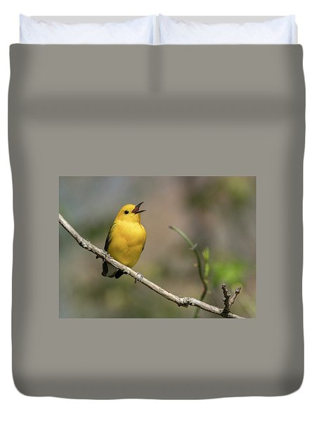 Prothonotary Warbler Singing Duvet Cover