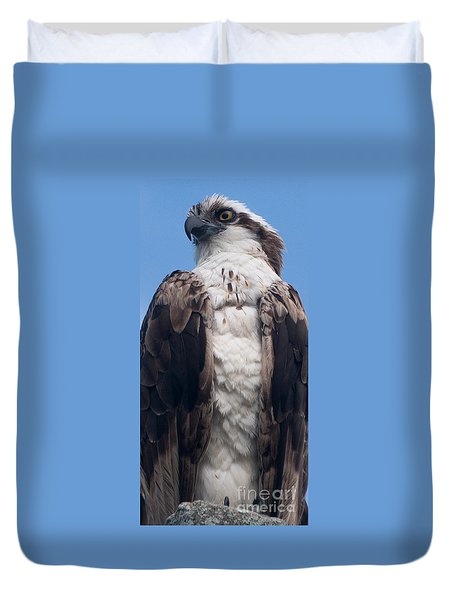 Proud Hawk Duvet Cover