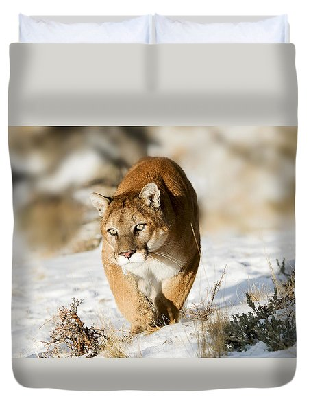 Prowling Mountain Lion Duvet Cover