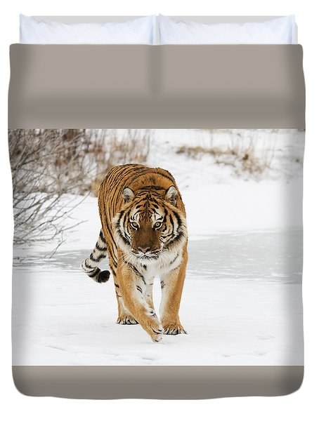 Prowling Tiger Duvet Cover