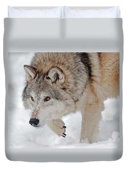 Prowling Wolf Duvet Cover