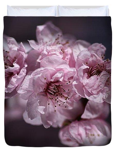 Prunus A Pink Spring Duvet Cover