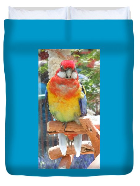 Multi-color Pudgy Budgie Duvet Cover