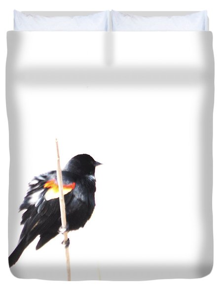 Puffed Up Red-winged Blackbird Duvet Cover