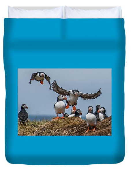 Puffins Duvet Cover