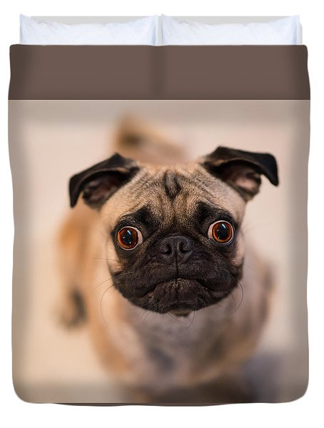 Duvet Cover featuring the photograph Pug Dog by Laura Fasulo