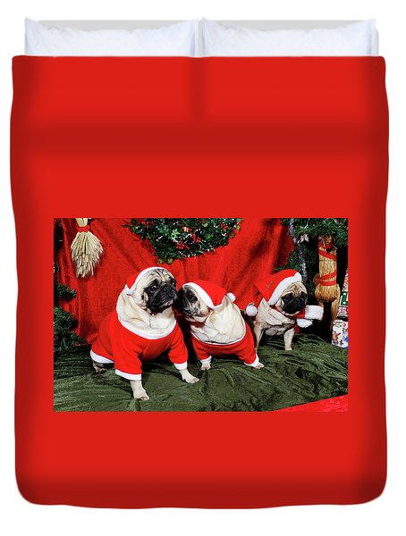 Pugs Dressed As Father-christmas Duvet Cover