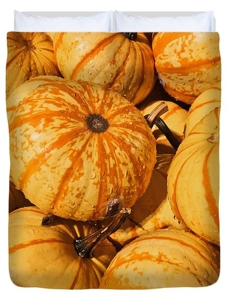 Pumpkin Harvest Duvet Cover