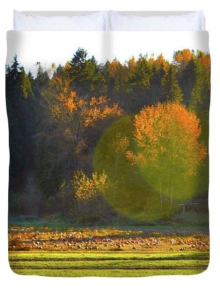 Pumpkin Sunset Duvet Cover