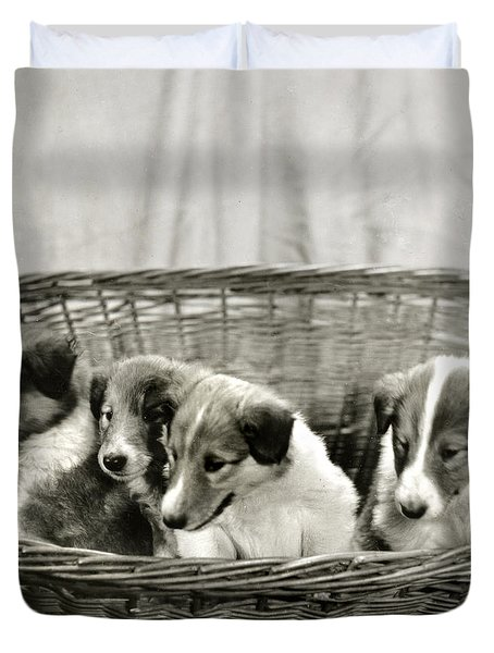 Puppies Of The Past Duvet Cover by Marilyn Hunt