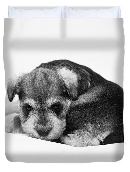 Puppy 1 Duvet Cover