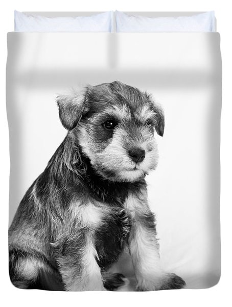 Puppy 2 Duvet Cover