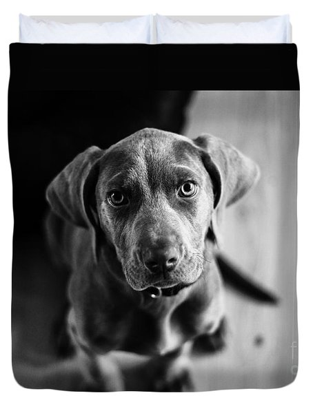 Puppy - Monochrome 1 Duvet Cover
