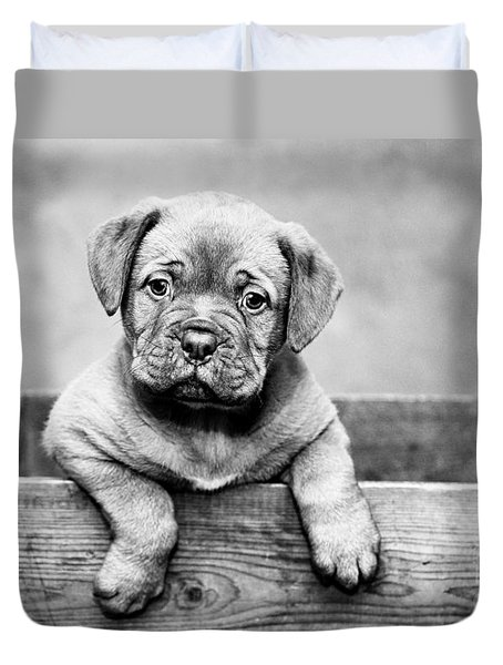 Puppy - Monochrome 3 Duvet Cover