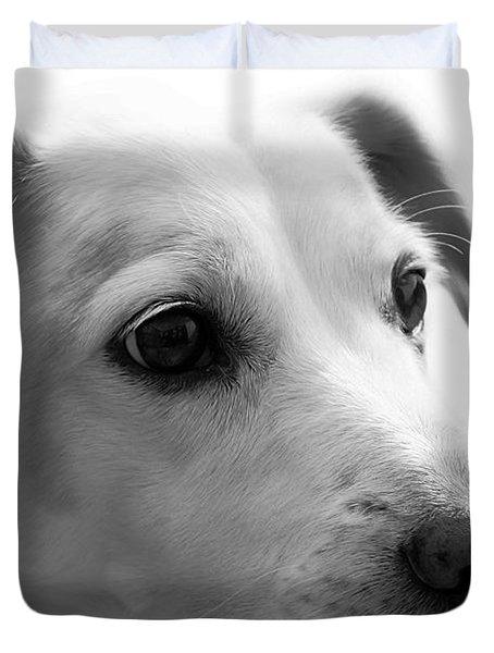Puppy - Monochrome 4 Duvet Cover