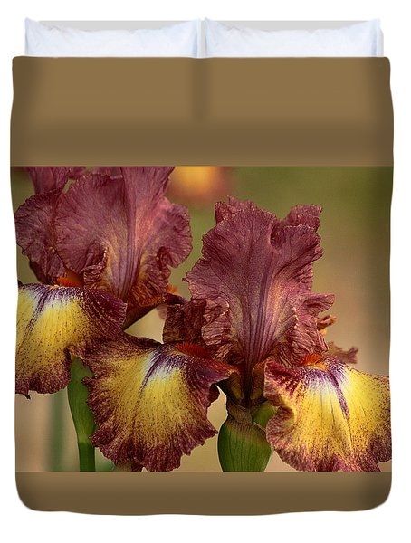 Duvet Cover featuring the photograph Purple And Yellow Bearded Iris by Sheila Brown