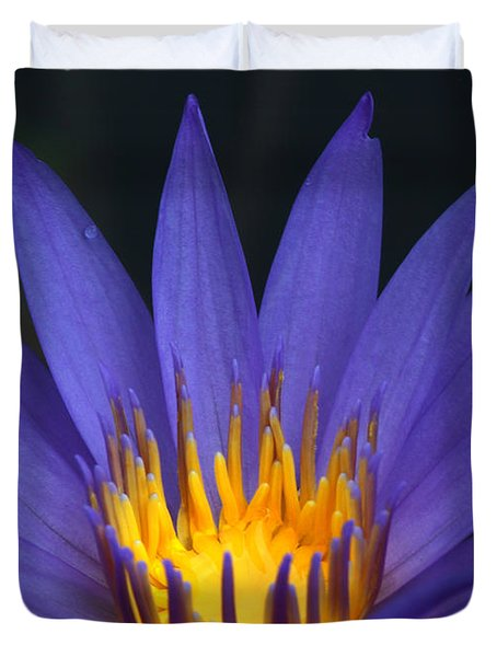 Purple And Yellow Water Lily Duvet Cover by Sabrina L Ryan