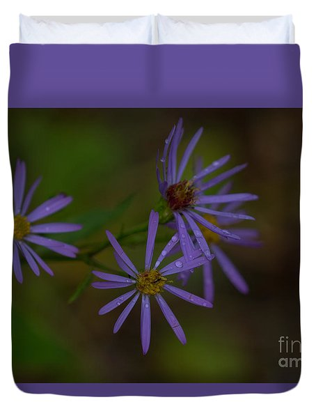 Purple Asters After A Summer Rain Duvet Cover