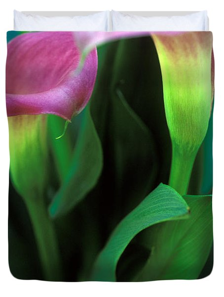 Purple Calla Duet Duvet Cover by Kathy Yates