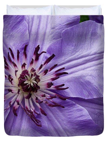 Purple Clematis Blossom Duvet Cover