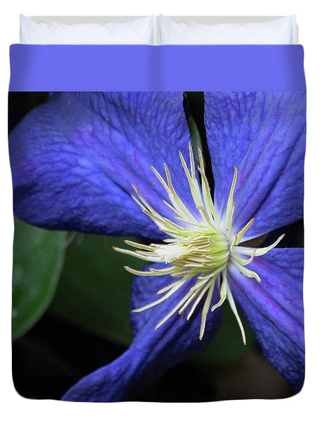 Purple Clematis Duvet Cover by Rebecca Overton