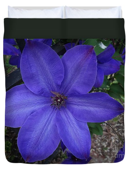 Purple Clematis Duvet Cover by Rod Ismay