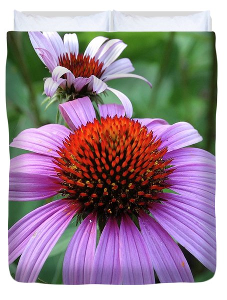 Purple Coneflowers Duvet Cover by Rebecca Overton