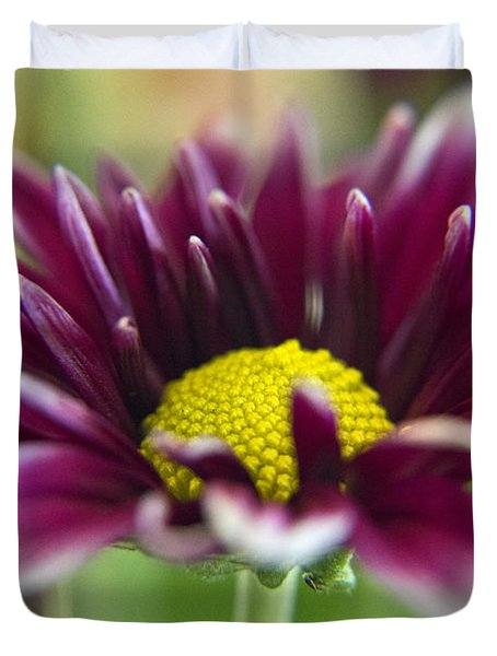 Purple Daisy Duvet Cover