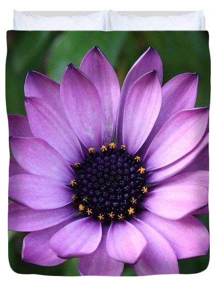 Purple Daisy Square Duvet Cover