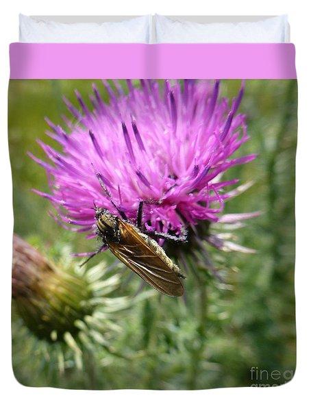 Purple Dandelions 1 Duvet Cover