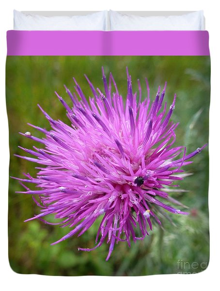 Purple Dandelions 2 Duvet Cover