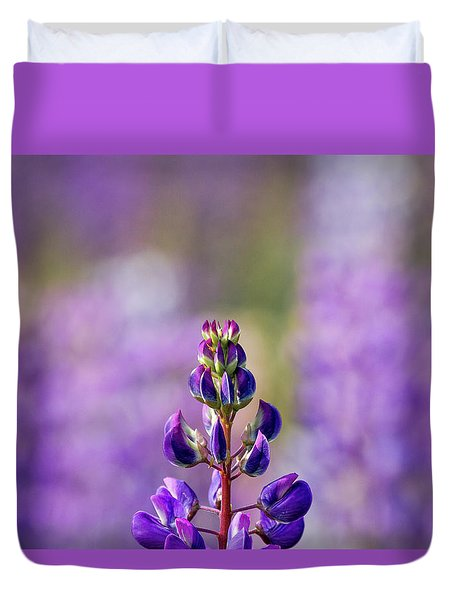 Purple Duvet Cover