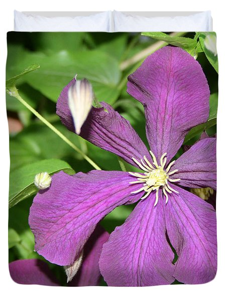Purple Delite Duvet Cover